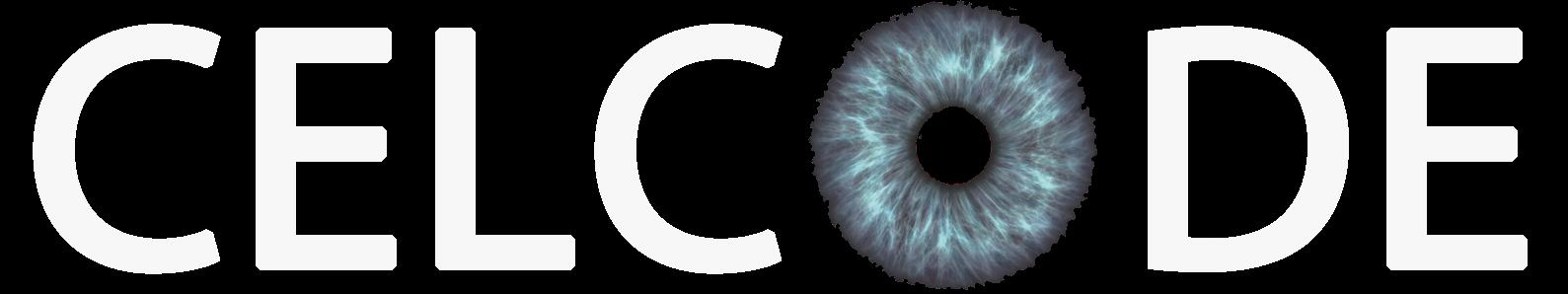 Celcode разработка сайтов